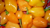 Orange habanero seeds (Capsicum Chinense)